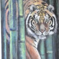 Tiger 50 x 65 cm 250 € ( ohne Rahmen )