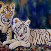 Junge Tiger 30 x 40 cm (verkauft)